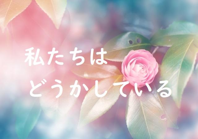 の 期間 ネタバレ 限定 お姫様